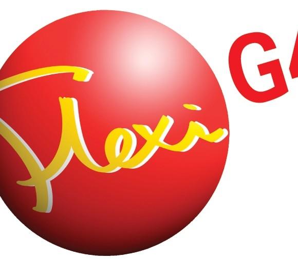 FlexiG4 Logo